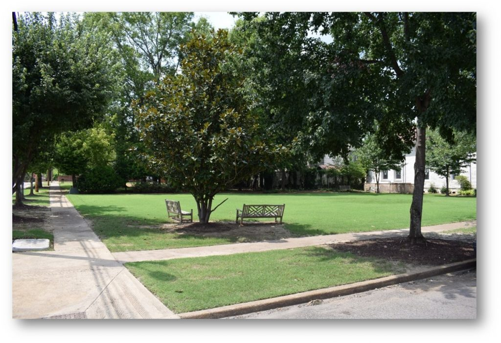 Two Benches Under Tree in Park in Corinth MS